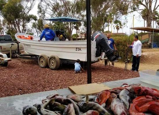 Acomodations Fishing